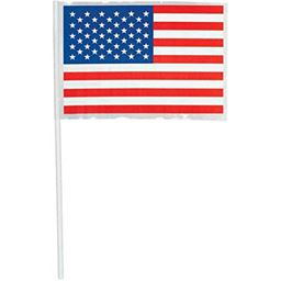 American Party Flag, 48 Ct.