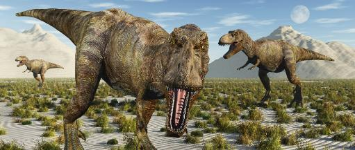 A pack of carnivorous Tyrannosaurus rex dinosaurs during Earth's Cretaceous period Poster Print V0Z4N3YRZGBKMIXR