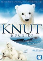 Knut & friends (dvd) (dol dig 5.1/enhance 16x9) DPEL6352D