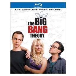 Big bang theory-complete 1st season (blu-ray/2 disc/ws) BR295093