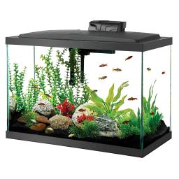 Aqueon 100530578 black aqueon 20 gallon led aquarium kit black 24.2 x 12.5 x 19.5