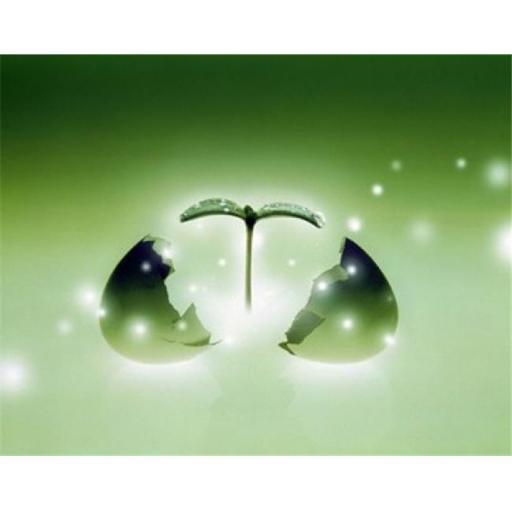 Panoramic Images PPI117859 Shiny green egg bursting in two with green sprig and stars escaping Poster Print by Panoramic Images - 36 x 29