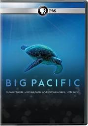 Big pacific (dvd/2 disc) DBIPA600D