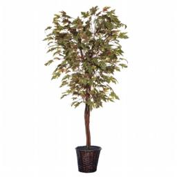 Vickerman TDX1760 6 ft. Frosted Maple Deluxe