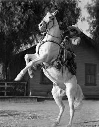 Lone Ranger Riding a Horse, wearing a Cowboy Attire Photo Print GLP457915