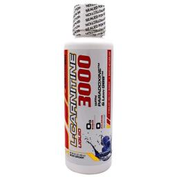 adaptogen-science-8360045-16-oz-l-carnitine-3000-liquid-blue-raspberry-ovvpl6phnya9iut4