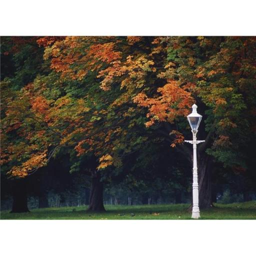 Posterazzi DPI1808884LARGE Phoenix Park Dublin Co Dublin Ireland - Lamppost in a Park Poster Print by The Irish Image Collection, 36 x 24 - Large