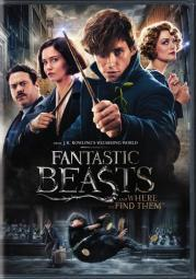 Fantastic beasts & where to find them (dvd/2 disc/special edition) D598607D