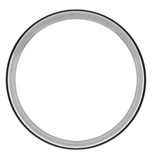 U.S. WHEEL USW-RSS300517R 17 ft. Stainless Steel 1.5 ft. Wheel Trim Ring, Polished