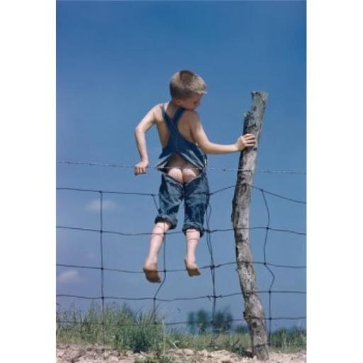 Posterazzi SAL3810990 Boy Trapped in a Barbed Wire Fence Poster Print - 18 x 24 in.
