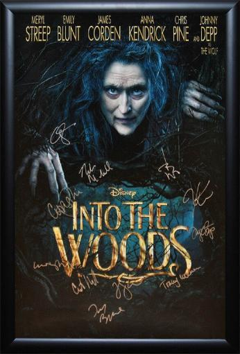 Into The Woods - Signed Movie Poster in Wood Frame with COA