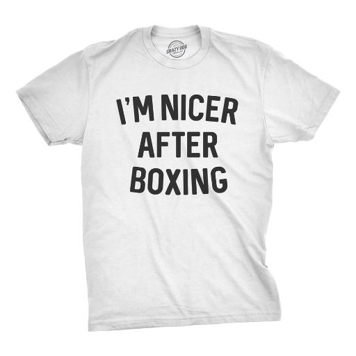 c8900deab Mens Im Nicer After Boxing Tshirt Funny Sarcastic Fitness Punching Bag Tee  For Guys