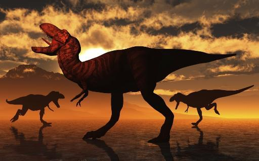 A pack of Tyrannosaurus rex dinosaurs hunting for food. Poster Print by Mark Stevenson/Stocktrek Images TF8WFNYEXIIZG4VJ