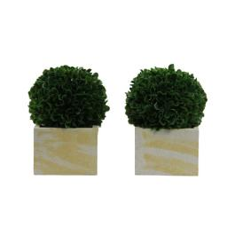 admired-by-nature-abn5p009-grn-2-7-in-faux-preserved-artificial-boxwood-ball-topiary-plant-tabletop-in-pot-set-of-2-2508e5ccff3d2360