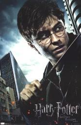 Harry Potter and the Deathly Hallows - Harry Poster Print TIARP1277