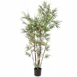Vickerman H110670 7 ft. Potted Black Bamboo X10 1735 Lvs