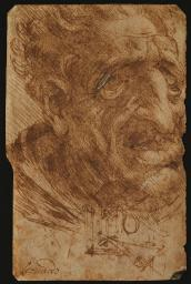 Head Of An Old Man And Sketches Of A Mechanical Device Poster Print EVCMOND029VJ537HLARGE