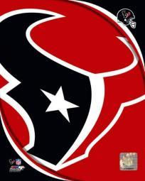 Houston Texans 2011 Logo Photo Print PFSAANR06001