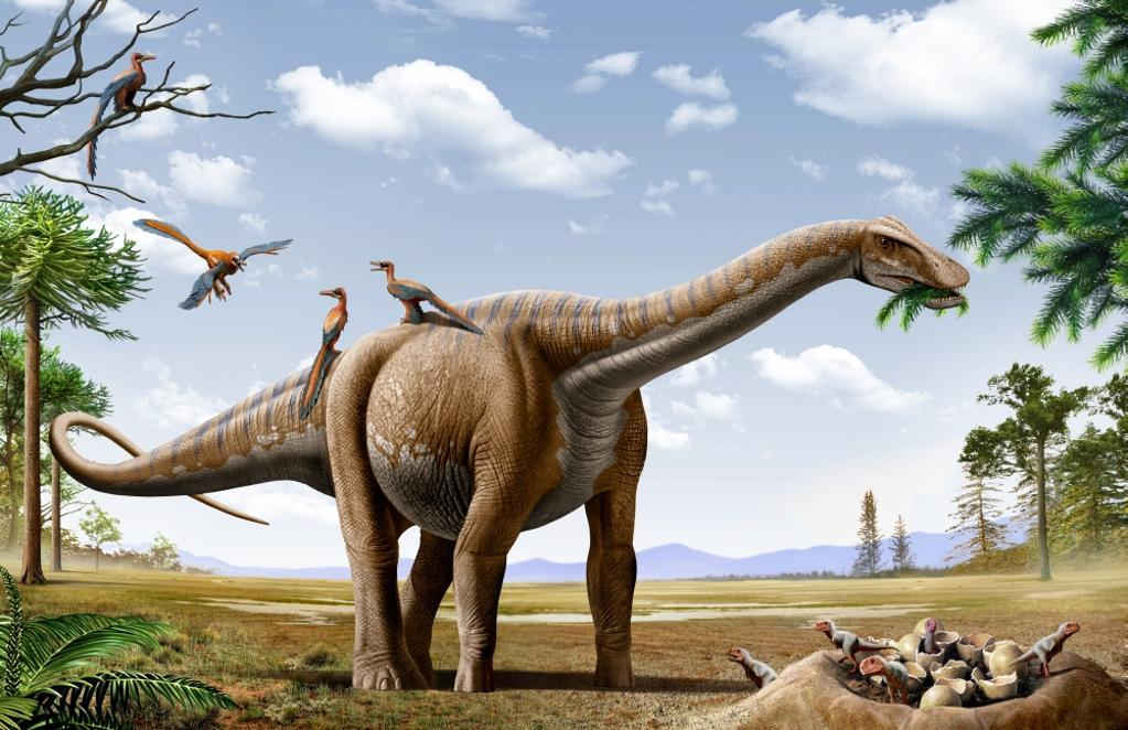 A Rapetosaurus is feeding from conifers leaf, with some Rahonavis on it's back and newborn Majungasaurus babies in their nest Poster Print