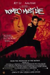 Romeo Must Die Movie Poster (11 x 17) MOV210445