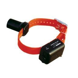 D.T. Systems Btb-800 Orange D.T. Systems Baritone Dog Beeper Collar Orange