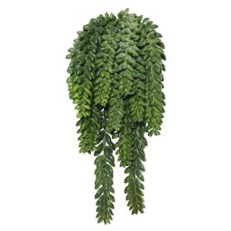 Vickerman FL171401 Donkeys Tail Bush X14 with 1311 Bean Succulent - 13 in.
