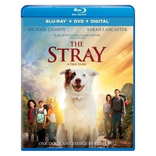 Stray (2017) (blu ray/dvd w/digital) (2discs) KAO8Q00SVSVGHPOL