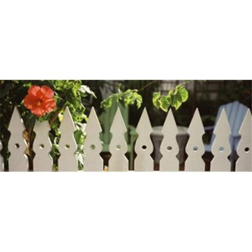 White picket fence and red hibiscus flower along Whitehead Street Key West Monroe County Florida USA Poster Print by - 36 x 12