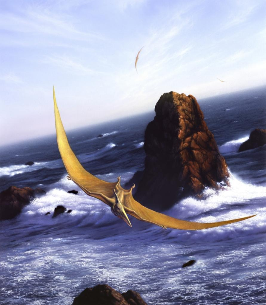 A Pteranodon soars above the ocean and rocks Poster Print