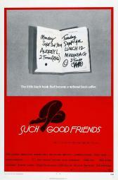 Such Good Friends Us Poster 1971 Movie Poster Masterprint EVCMCDSUGOEC002HLARGE