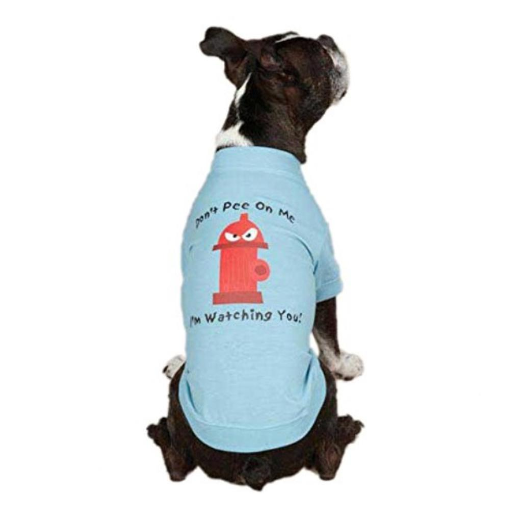 Casual Canine ZM351 14 19 Hydrant Tee for Dogs, Small/Medium, Blue