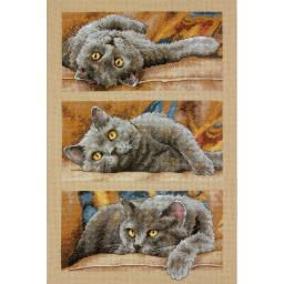 "Max The Cat Counted Cross Stitch Kit-10""X15"" 14 Count 70-35301"