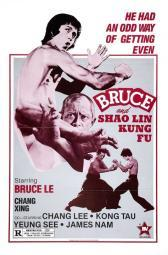 Bruce and Shao-lin Kung Fu Movie Poster Print (27 x 40) MOVCB32633