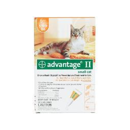 Advantage Orange-10-6 Advantage Flea Control For Cats 1-9 Lbs 6 Month Supply