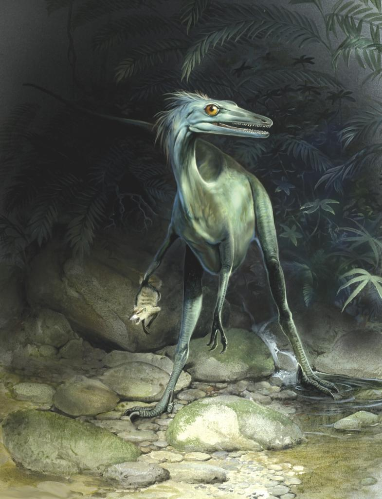 A primitive Barunlestes is caught by the fast moving sickle-clawed Saurornithoides troodontid Poster Print