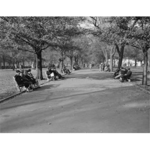 Posterazzi SAL255423863 USA Massachusetts Boston People Sitting on Benches & Walking in Park Poster Print - 18 x 24 in.