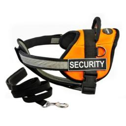 """Dean & Tyler's DT Works Orange """"SECURITY"""" Harness with Chest Padding, X-Small, and Black 6 ft Padded Puppy Leash."""