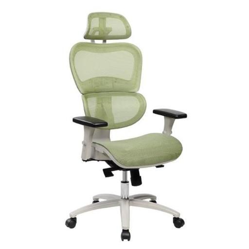 Techni Mobili RTA-5004-GRN High Back Mesh Office Executive Chair with Neck Support, Green - 47.75-51.5 x 27.5 x 27.75 in.
