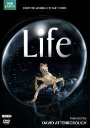 Life (narrated by david attenborough) dvd (4 disc/eng-sp-fr sub) DE115787D