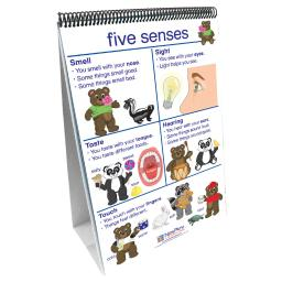 New path learning flip charts all about me early 340027