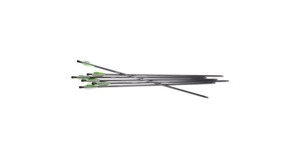 Benjamin ab6pka benjamin pioneer airbow arrows 6-pack 26 carbon arrows 375gr thumbnail