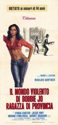 Bobbie Jo and the Outlaw Movie Poster (11 x 17) MOV250297