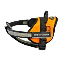 Dean & Tyler 25-Inch to 34-Inch Disabled Veteran Dog Harness with Padded Reflective Chest Straps, Small, Orange/Black