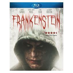 Frankenstein (2015) (blu ray)                                 nla BRA-16436