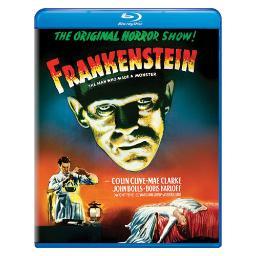 Frankenstein (blu ray) BR61126665
