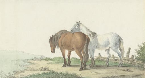 A Brown And White Horse On A Road Next To A Fence, By Jean Bernard, 1802, Dutch Watercolor Painting. Poster Print