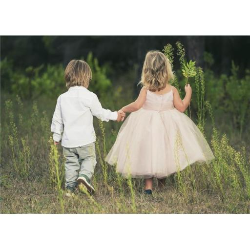 Posterazzi DPI12270868LARGE A Young Boy & Young Girl Holding Hands & Walking Through A Field - Tarifa Cadiz Andalusia Spain Print - 36 x 26 in. - Larg