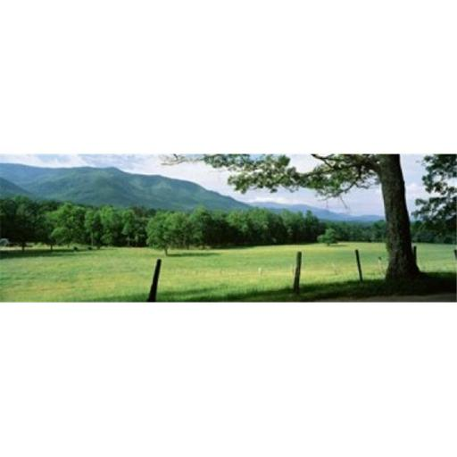 Meadow Surrounded By Barbed Wire Fence Cades Cove Great Smoky Mountains National Park Tennessee USA Poster Print by - 36 x 12