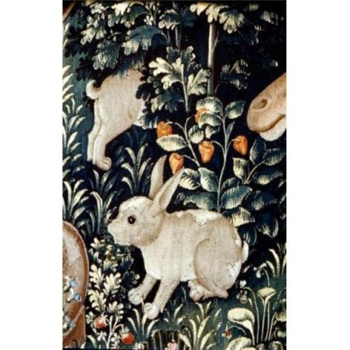 Posterazzi SAL90064853 Unicorn Tapestry - Rabbit Detail Tapestry Textiles Poster Print - 18 x 24 in.