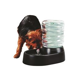 Dog & Cat 62 Oz Automatic Pet Fountain Pet Waterer - Black